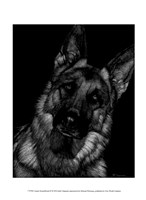Canine Scratchboard II Fine Art Print