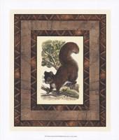Rustic Squirrel Fine Art Print