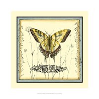 Butterfly and Wildflowers III Framed Print