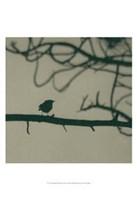 Caligraphy Bird II Fine Art Print