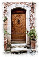 Doors of Europe V Fine Art Print