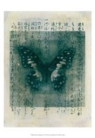 Butterfly Calligraphy I Fine Art Print