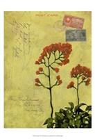 Postage VII Fine Art Print