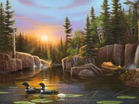 Evening Solitude Fine Art Print