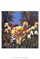 Le vieux jardin Fine Art Print