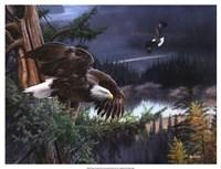 Wings of Freedom Fine Art Print