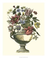 Floral Splendor II Fine Art Print