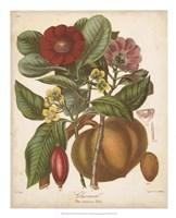 Botanicals I Fine Art Print