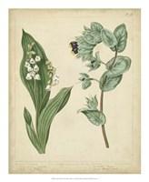 Cottage Florals IV Fine Art Print