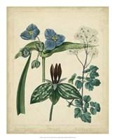 Cottage Florals V Fine Art Print
