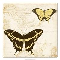 Jardin des Papillons I Framed Print