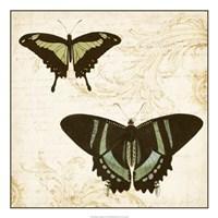 Jardin des Papillons II Framed Print