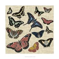 Butterflies & Linen I Framed Print