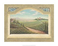 Vineyard Window I Framed Print