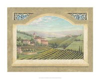 Vineyard Window II Framed Print