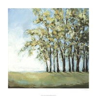 Tree in Summer Fine Art Print