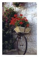Flower Box Bike Fine Art Print