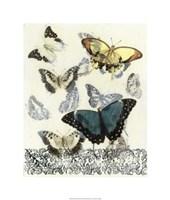 Butterfly Habitat II Framed Print