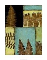 Fossilized Ferns III Framed Print