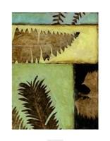 Fossilized Ferns IV Framed Print