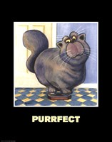 Purrfect Fine Art Print