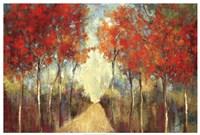 Nature's Walk  ( path) Fine Art Print
