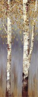 Butterscotch Birch Trees II - MINI Framed Print