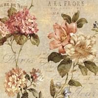 Fleur Paris I Framed Print