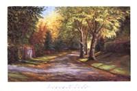 Cheryl Lane Fine Art Print