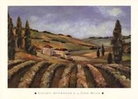 Chianti Afternoon II Framed Print