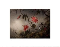 Passion Flowers and Hummingbirds, about 1870-83 Fine Art Print