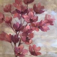 April Blooms II Framed Print