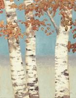 Golden Birches II Fine Art Print