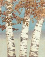 Golden Birches III Fine Art Print