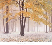 Early Autumn Snow Fine Art Print