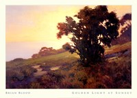 GOLDEN LIGHT AT SUNSET Fine Art Print
