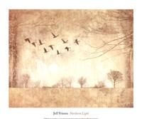Northern Light Fine Art Print