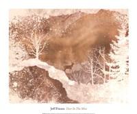Deer In The Mist Fine Art Print