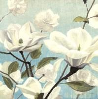 Southern Blossoms II Square Fine Art Print
