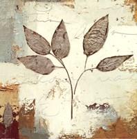 Silver Leaves III Fine Art Print