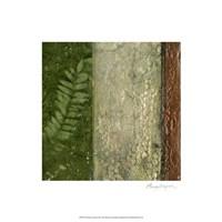 Earthen Textures II Fine Art Print