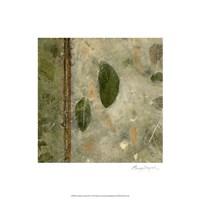 Earthen Textures III Fine Art Print