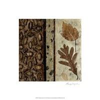 Earthen Textures VI Fine Art Print