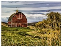 Palouse Barn Fine Art Print