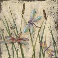 Dancing Dragonflies I Fine Art Print