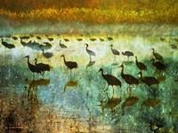 Cranes in Mist I Fine Art Print