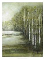 Tranquil Waters II Fine Art Print