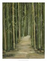 Bamboo Forest Fine Art Print