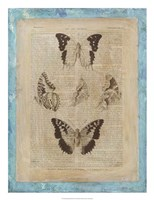 Bookplate Butterflies IV Framed Print