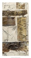 Birch Bark Abstract II Framed Print